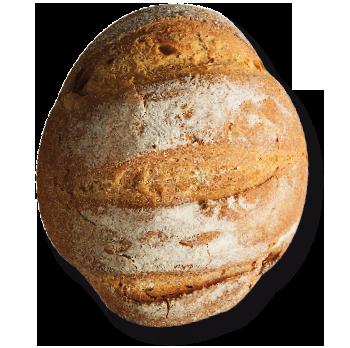 Linea Gourmet
